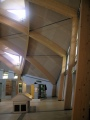 high specification timber construction - Eden Project